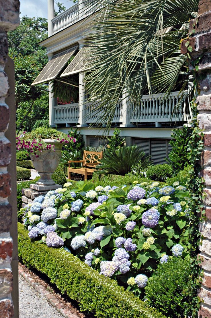 a Charleston garden - love it all! Brought to you by Cookies In Bloom and…