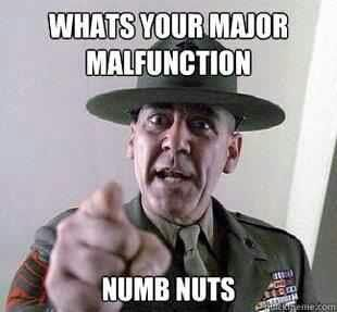 from Rodney r lee ermey gay