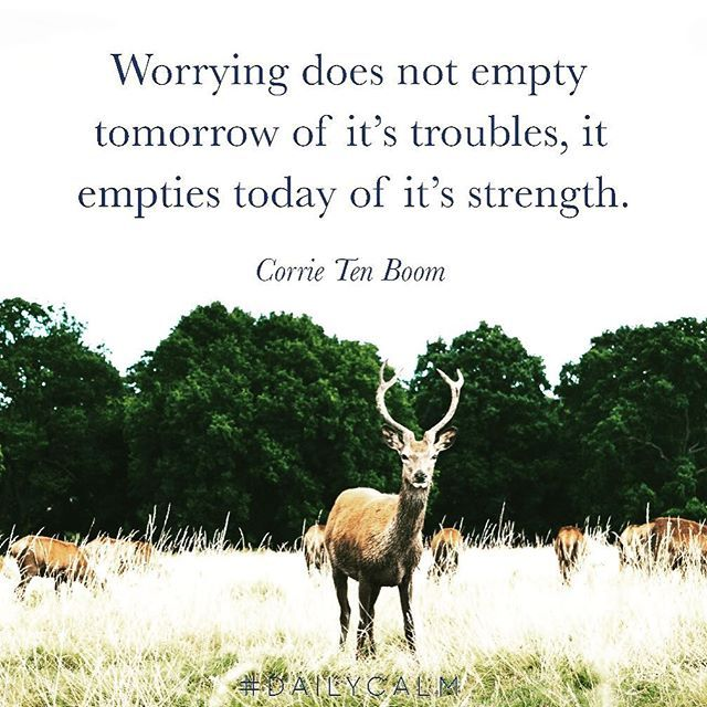 Reposting @oneminutetrader: Worrying does not empty tomorrow of its troubles, it empties today of its strength. #trading #futures #stocks #stockmarket #investor #investing #markets #forex #forextrader #forextrading #options #daytrader #daytrading #millionaire #millionairemindset #wallstreet #OMT #MPTA