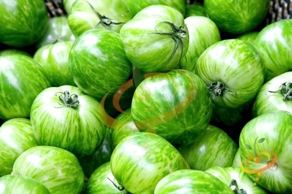 'Green Zebra' is a tart green tomato that's great for salads.  It's ripe when the shoulders have a yellowish cast.