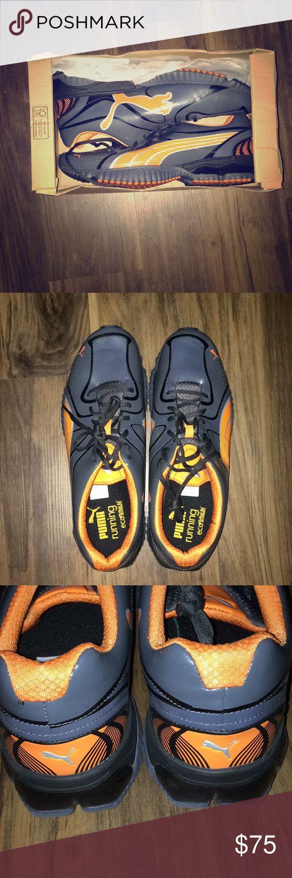 NIB PUMA men's new running shoes. NEW IN BOX! PUMA men's running shoes. Puma Shoes Sneakers