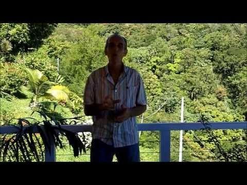 REIKI vidéo : harmonisation des CHAKRAS (français) - YouTube