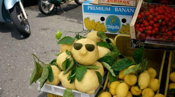 grote citroenen van salina >> zelfgemaakte Limoncello