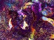 "New artwork for sale! - "" Dog Merle Blue Merle Collie Puppy  by PixBreak Art "" - http://ift.tt/2eFT5wZ"