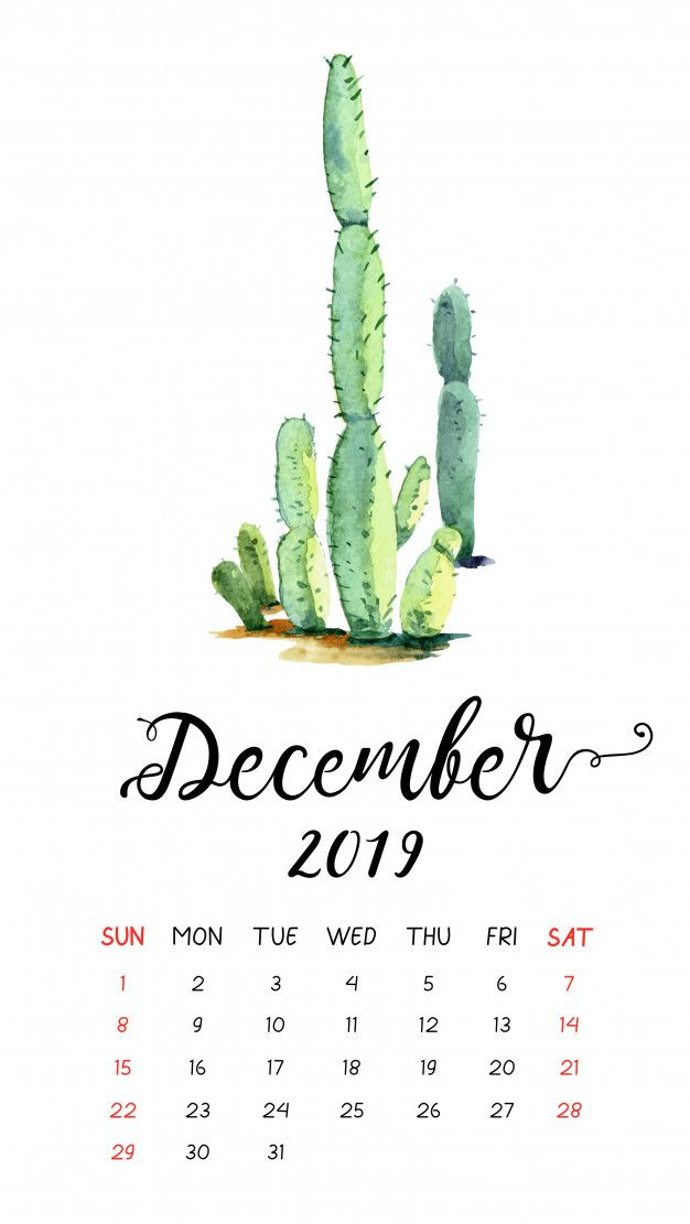 Watercolor Cactus Calendar For December 2019. | Calendar ...