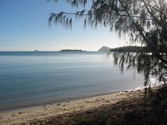 Dingo Beach QLD 4800 - Google Maps