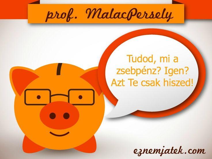 Professzor MalacPersely beszól... :)   A téma a héten a zsebpénz - a XXI. századra áramvonalasítva.   A blogpost jön 2014.07.25-én délután kettőtől itt: http://eznemjatek.com/cirkusz/5-teny-amit-sosem-hittel-volna-zsebpenzrol