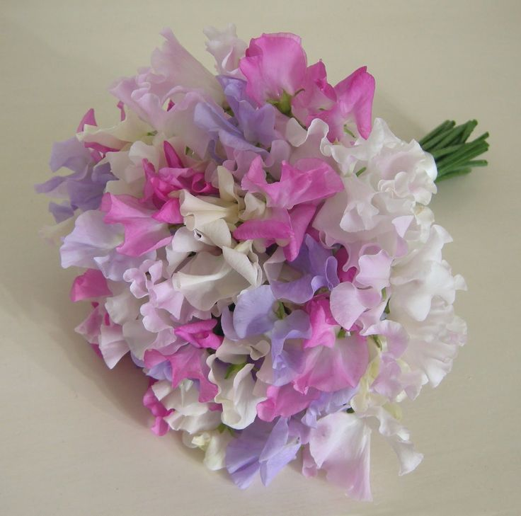 Pink Wedding Flower Arrangements | Bridesmaid's bouquet of mixed ivory,pink and lilac sweet peas.