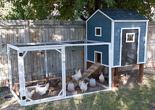 perfectly simple and functional coop