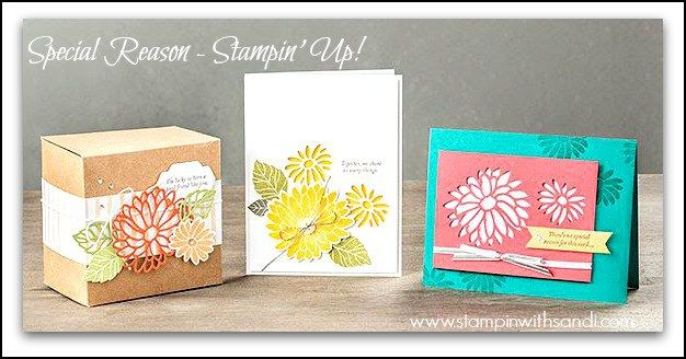 Special Reason Stampin Up from www.stampinwithsandi.com