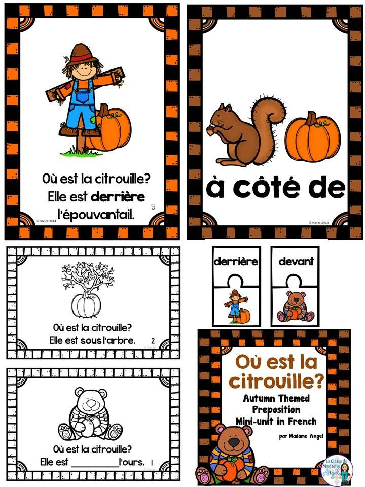 C'est l'automne! Autumn or Fall themed French activities to practice prepositions! Includes emergent reader, posters, puzzles and other activities!