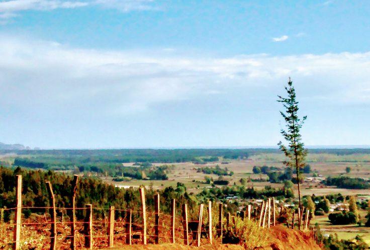 Putu, Regio del Maule, Chile. Parte del pueblo, resto suelos agrícolas y forestales. Al fondo las Dunas, el Océano Pacífico. Al fondo a la izquierda se puede apreciar la Piedra de la Iglesia en las playas de Constitución.
