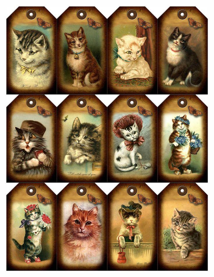Картинки с котом для скрапбукинга