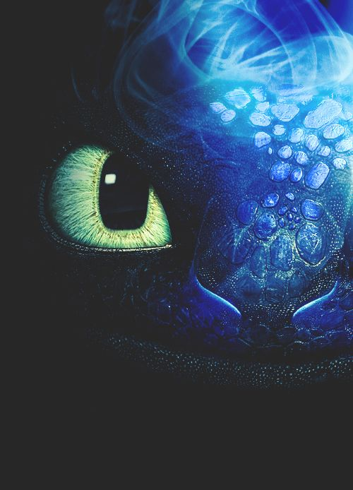 "Toothless the Night Fury | itistimetodisappear: ""He's challenging ..."