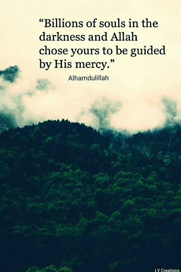 SubhanAllah... Indeed Allah's guidance is the richest of all treasures...