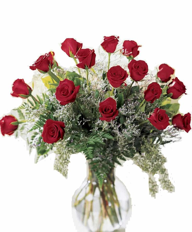 Send Flowers To Jaipur - Contact At  91-8288024441