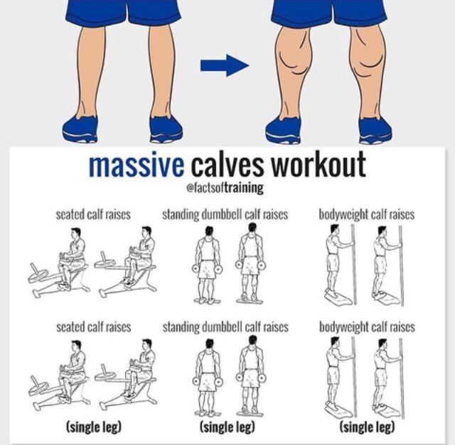 (2) Twitter | Calf exercises, Biceps workout, Fitness training