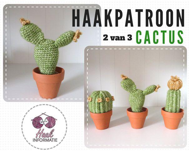Ongekend Haakpatroon Cactus 2 van 3 | Haakpatronen, Gehaakte cactus, Haken HK-57