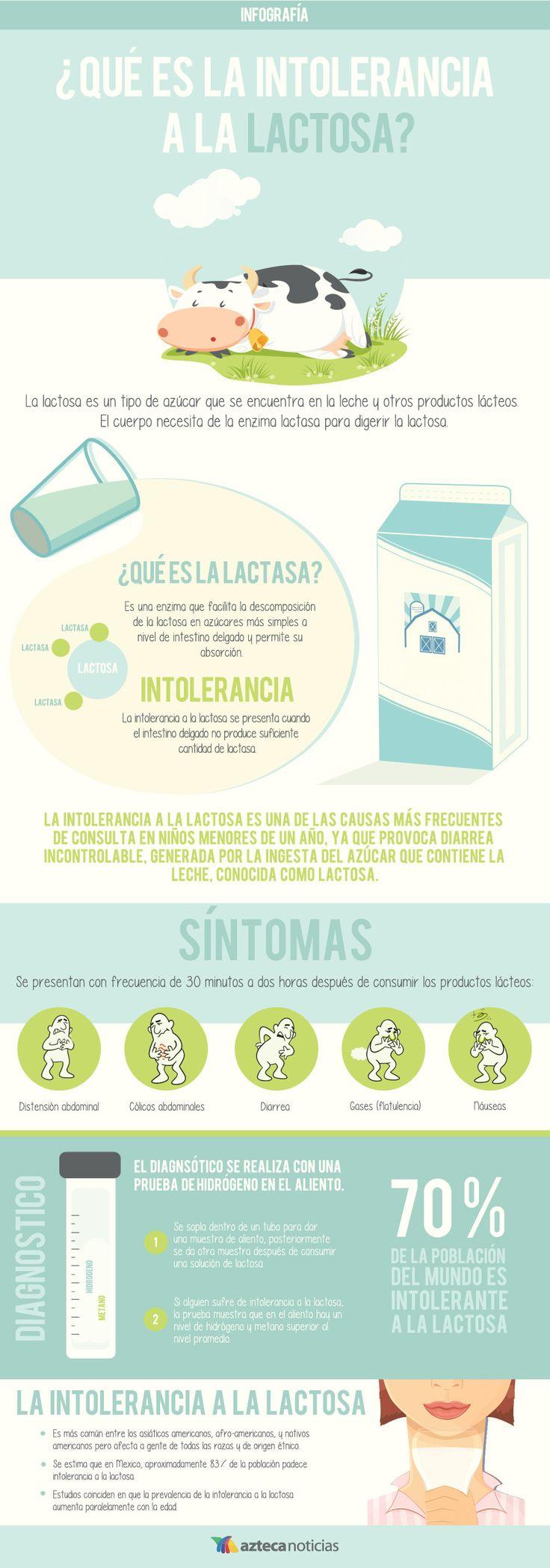 ¿Qué es la intolerancia a la lactosa? #infografia