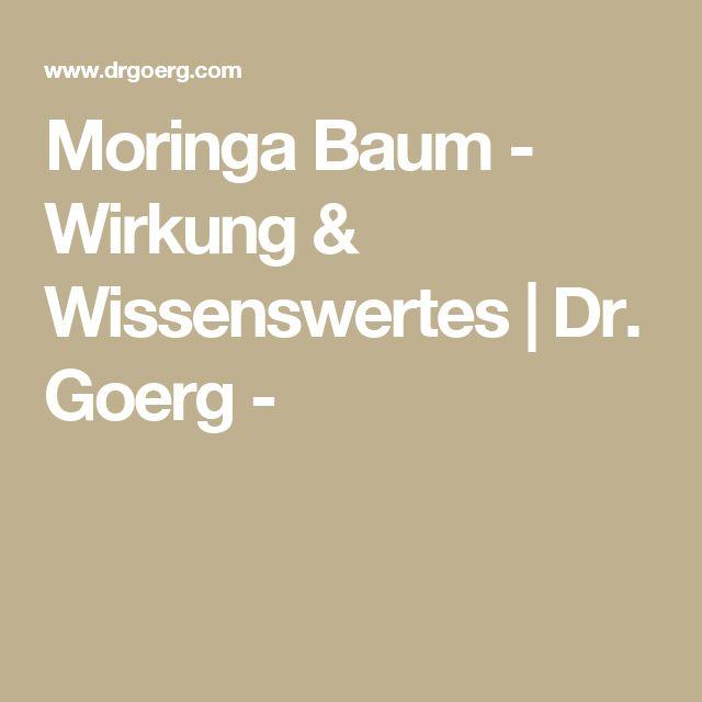 Moringa Baum - Wirkung & Wissenswertes | Dr. Goerg -