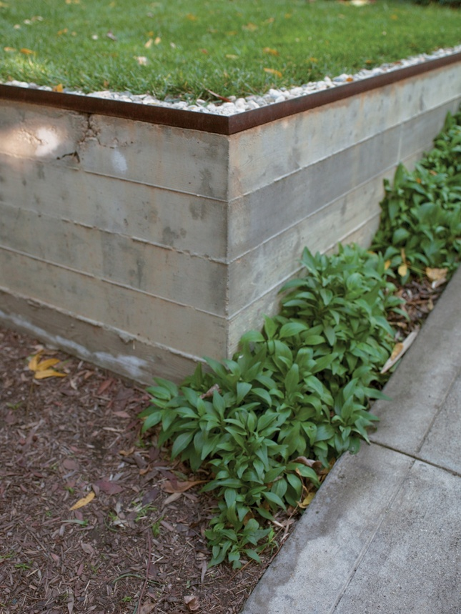 concrete retaining wall allows rain to percolate into the ground and irrigate a tree rather than create polluting runoff.