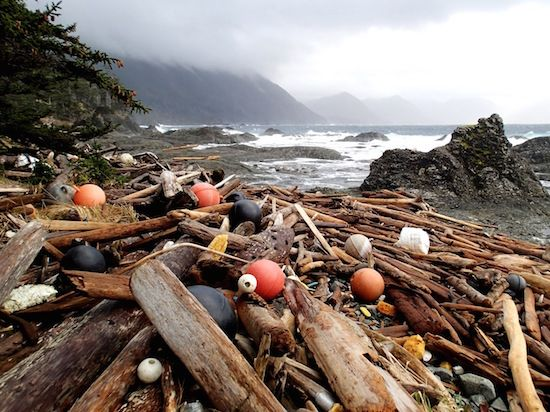 Haida Gwaii - Debris Still Washing up, Four Years After Tsunami in Japan