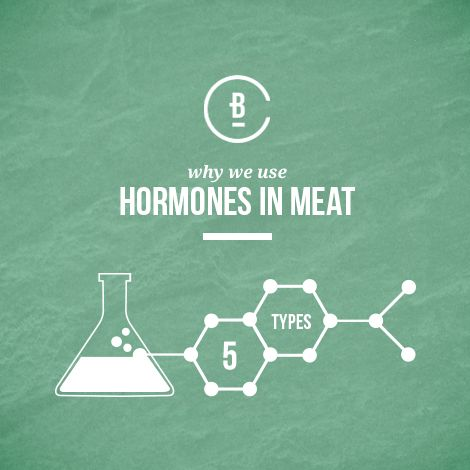 Learn why hormones are used in cattle production - and why it poses no threat to you.