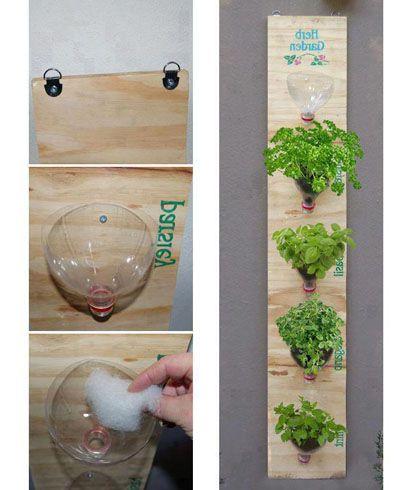 Organizador de hierbas frescas en la cocina decoraci n - Plantas aromaticas en la cocina ...