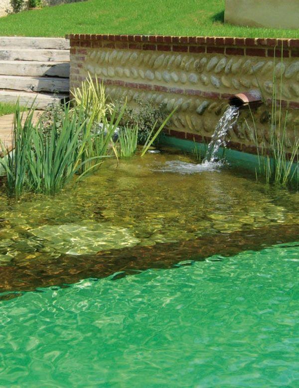une piscine biologique avec un bassin de natation