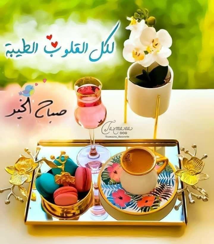 Pin By Manal On صباح الخير Good Morning Arabic Morning Wish Beautiful Morning