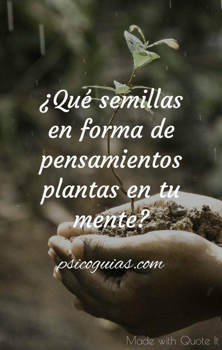 ¿Qué semillas en forma de pensamientos plantas en tu mente? #frases #psicologia