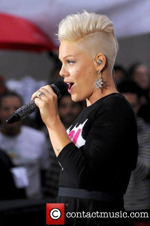 835 best pink images on pinterest alecia moore beth moore and idol p nk 2013 google search voltagebd Image collections