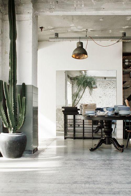 Großer Kaktus im Industrial Loft. #pflanzenfreude