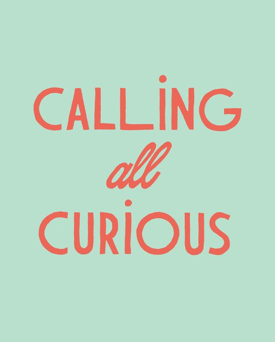 Calling all curious!