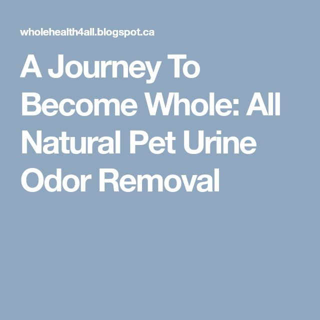 A Journey To Become Whole: All Natural Pet Urine Odor Removal