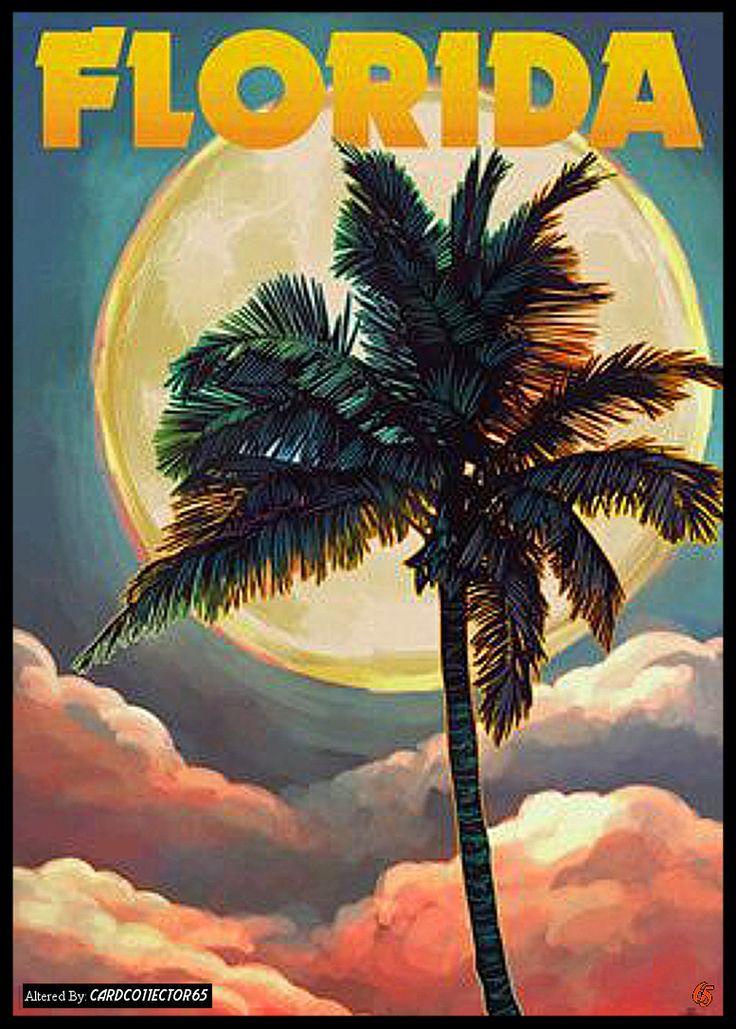 Florida - MTG - Sleeves