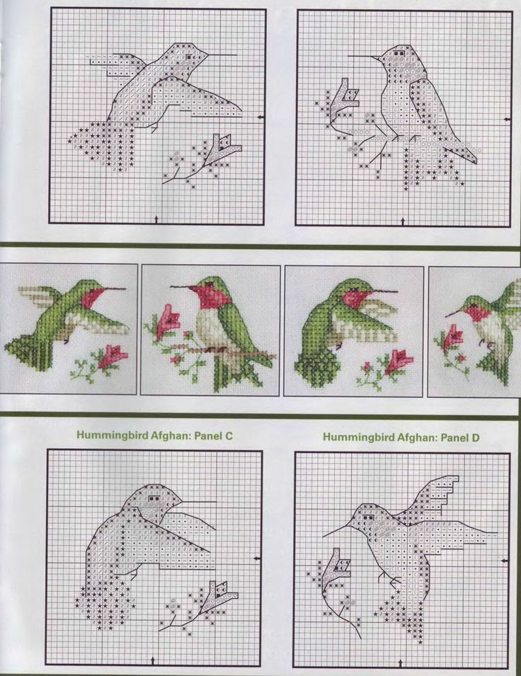1000 Images About Hummingbird Plastic Canvas Patterns On