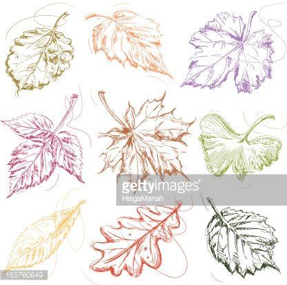 Vector Art : Falling Autumn Leaves