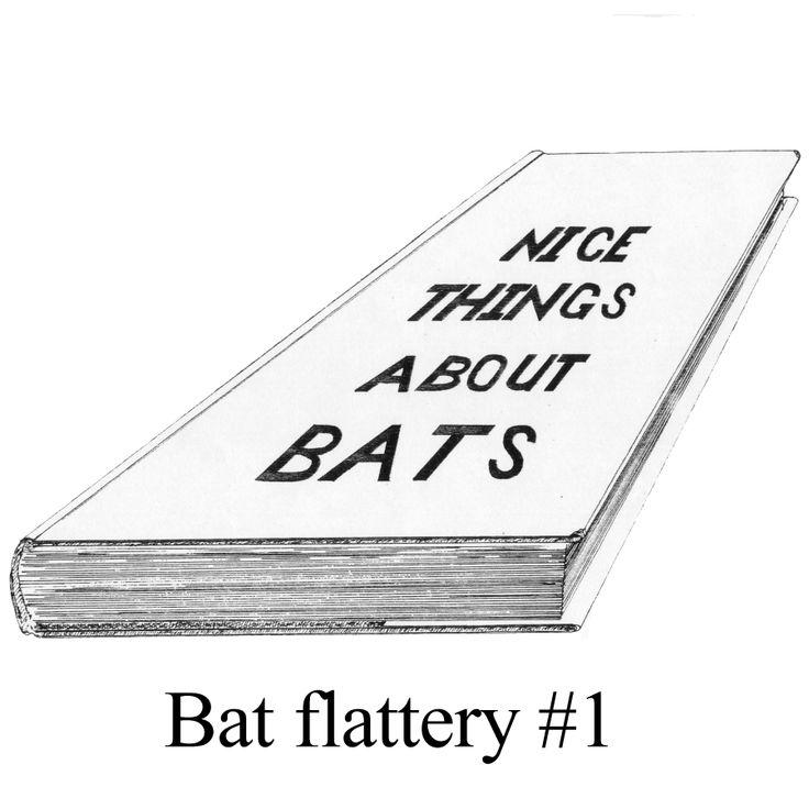 Bat flattery # 1.