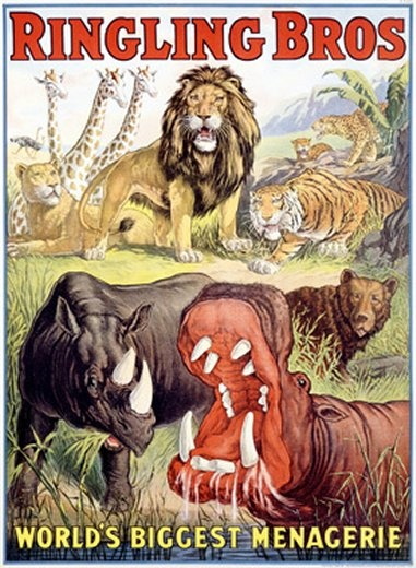 Vintage Ringling Bros Circus Poster