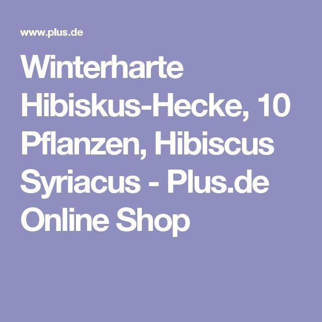 Winterharte Hibiskus-Hecke, 10 Pflanzen, Hibiscus Syriacus - Plus.de Online Shop