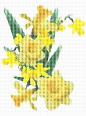 Daffodil Cross Stitch Pattern Flower Floral by xstitchpatterns