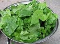 Spinach is rich in vitamins, minerals and other nutrients which assist in reducing blood pressure and helping to maintaining healthy blood pressure levels in the body.