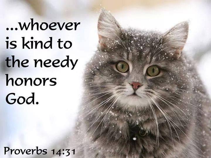 Proverbs 14:31.