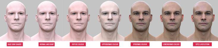 Creating a realistic skin shader.
