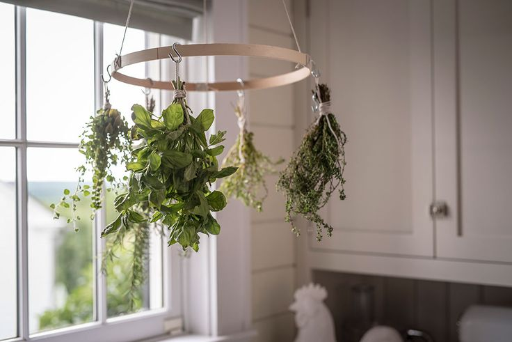 This simple hanging herb drying rack will air-dry herbs beautifully in your kitchen. All you need are a few items from your local craft store.
