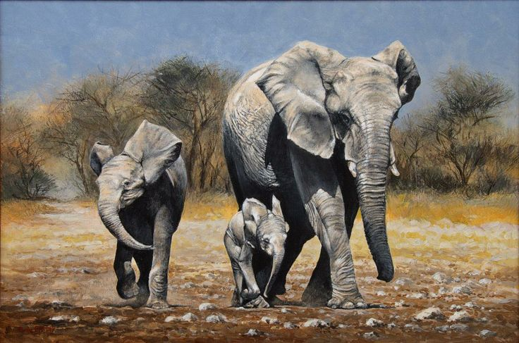 Done by Alida Pitout - www.wildgallery.co.za