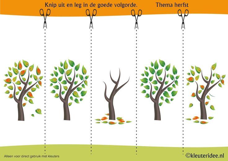 Leg de plaatjes van de herfstboom in logische volgorde , kleuteridee.nl, sequence free printable.