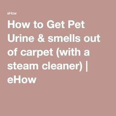 how to get pet urine smells out of carpet with a steam cleaner carpets steam cleaners and. Black Bedroom Furniture Sets. Home Design Ideas