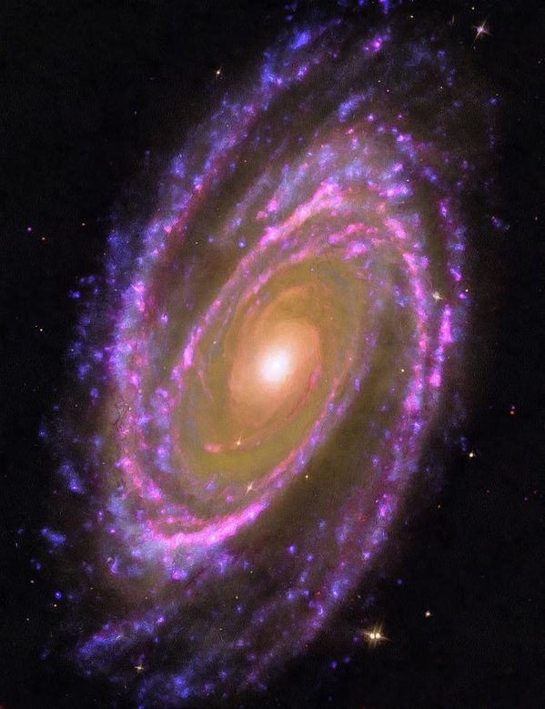 Space Image (Hubble): Bode's Galaxy, Messier 81 - wonderful pink, purple blue and yellow spiral. High quality digital painting with carefully enhanced colors, more vibrant and vivid than in the original Hubble photo. Looks amazing as large art print, poster or canvas, bring the fascination of the universe in your home or office! Credit: NASA, ESA and A. Zezas (Harvard-Smithsonian Centre for Astrophysics); GALEX data: NASA, JPL-Caltech, GALEX Team, J. Huchra et al.